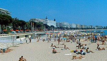 Possibilites De Delivrance D Une Carte Grise A Cannes